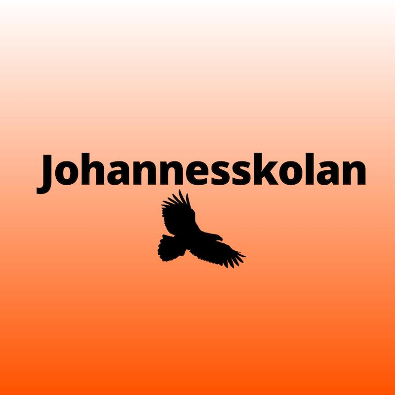Johannesskolan